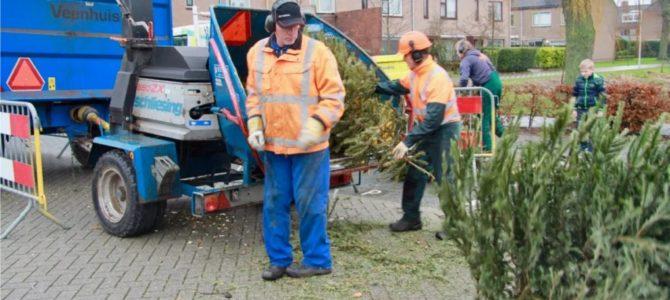 Kerstboom inzameling 8 Januari 2020.