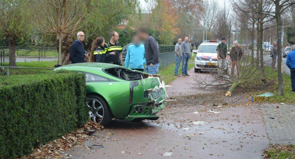 TVR ontworteld boom op Europalaan.