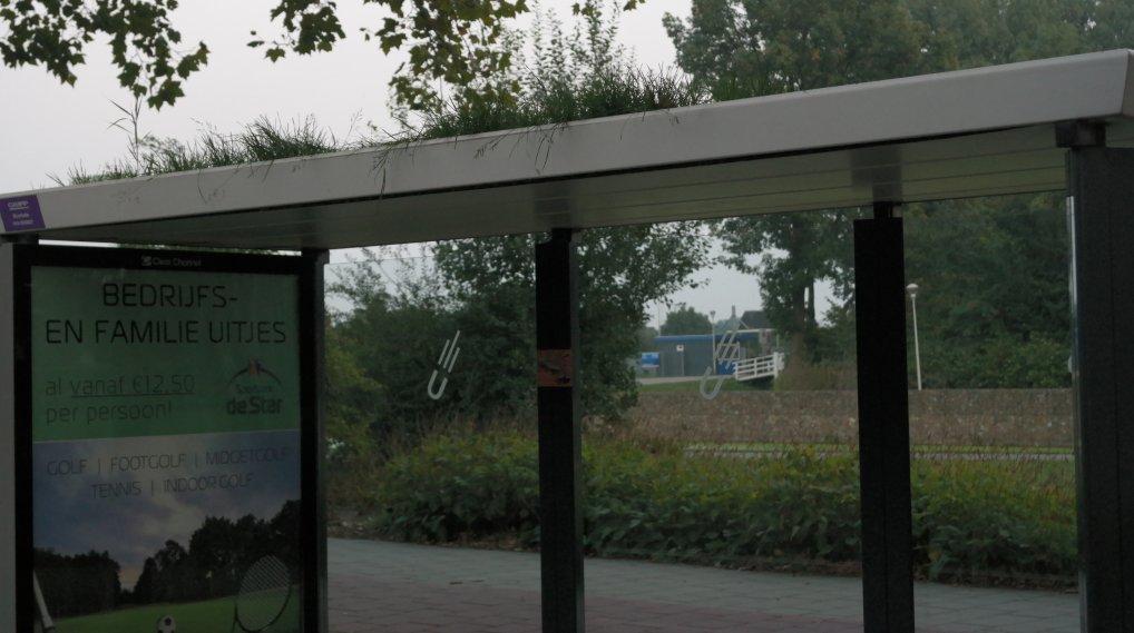 Bushalte onderhoud Pijnacker centrum.