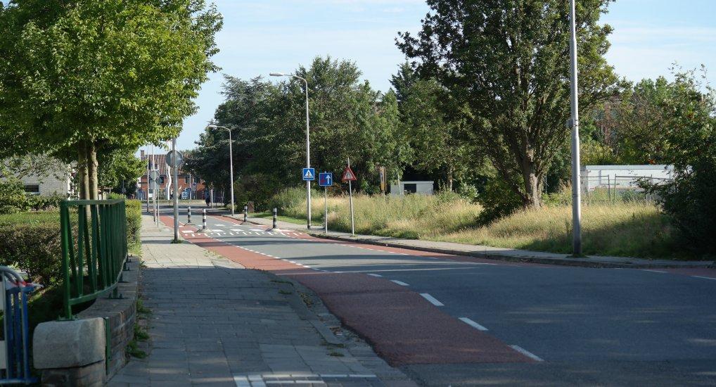 Bomenkap op Meidoornlaan en Noordweg.