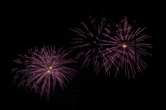 05-05-2014_bevrijdingsfeest