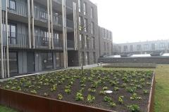 17-11-2012_binnentuin